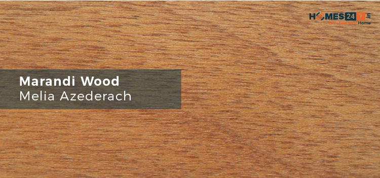 Meranti Dark Red - Types of Wood Used for Furniture