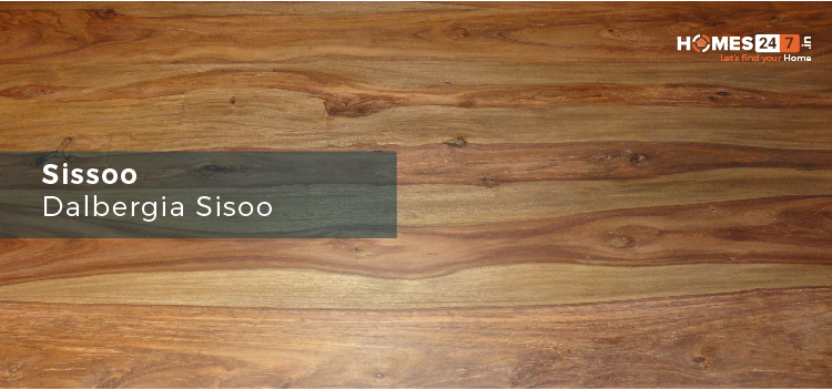 Siso Wood - Types of Wood Used for Furniture