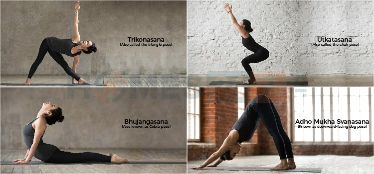 Types of Yoga Streches