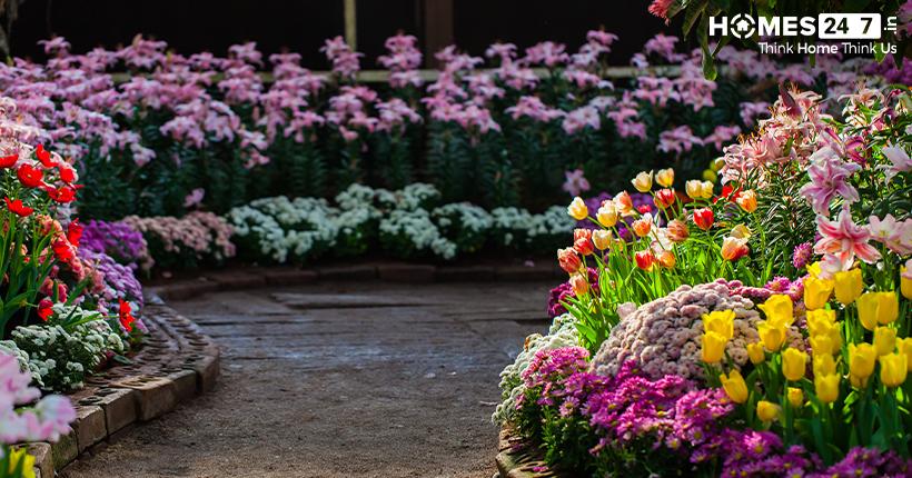 Vastu tips for Garden | Homes247.in