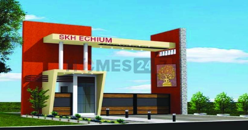 SKH Echium Cover Image